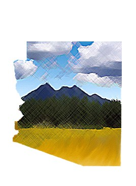 Arizona illustration for Flagstaff Nonprofit by Estevan Bellino of Built From Scratch Studios