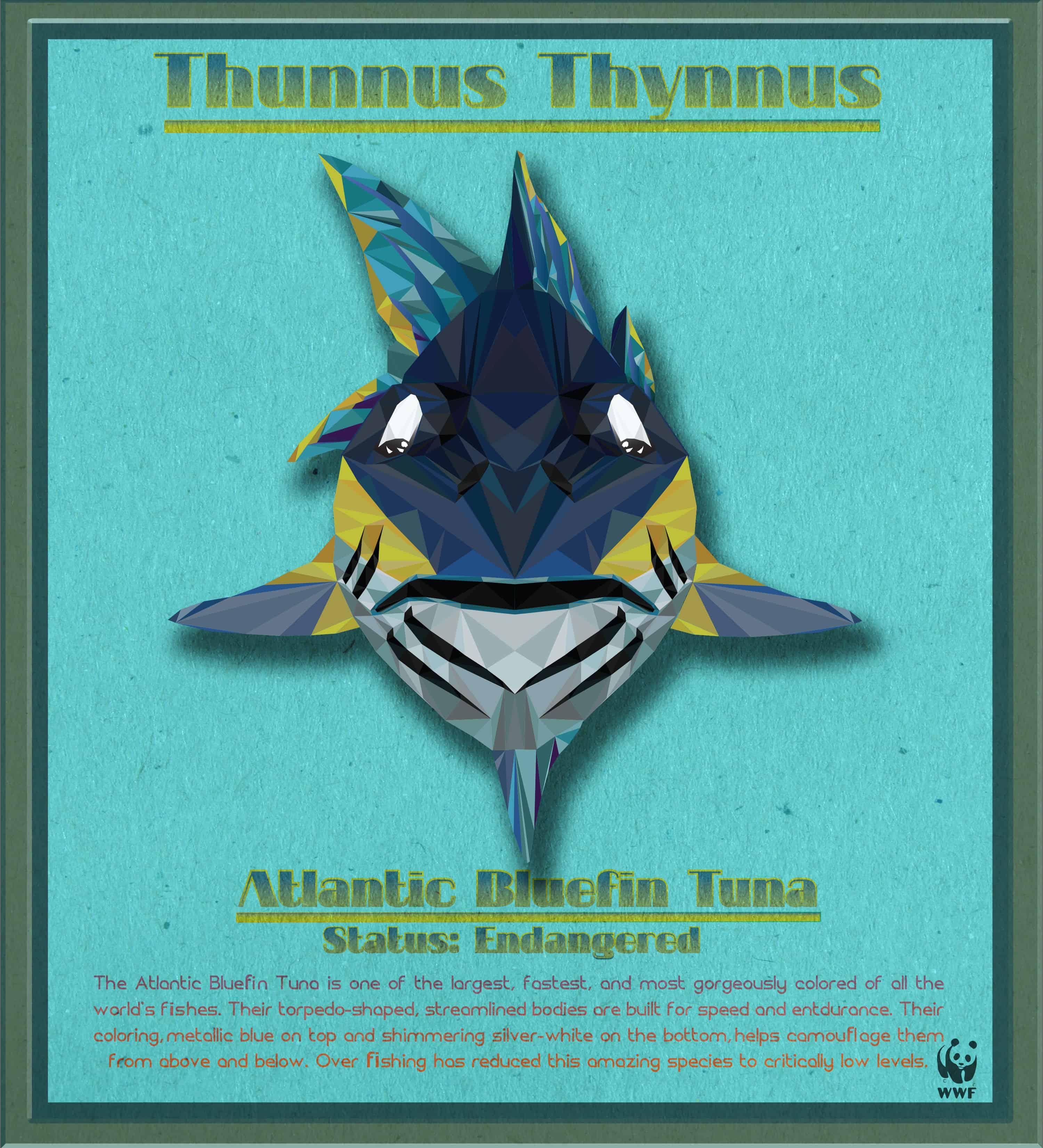 Bluefin Tuna Photoshop
