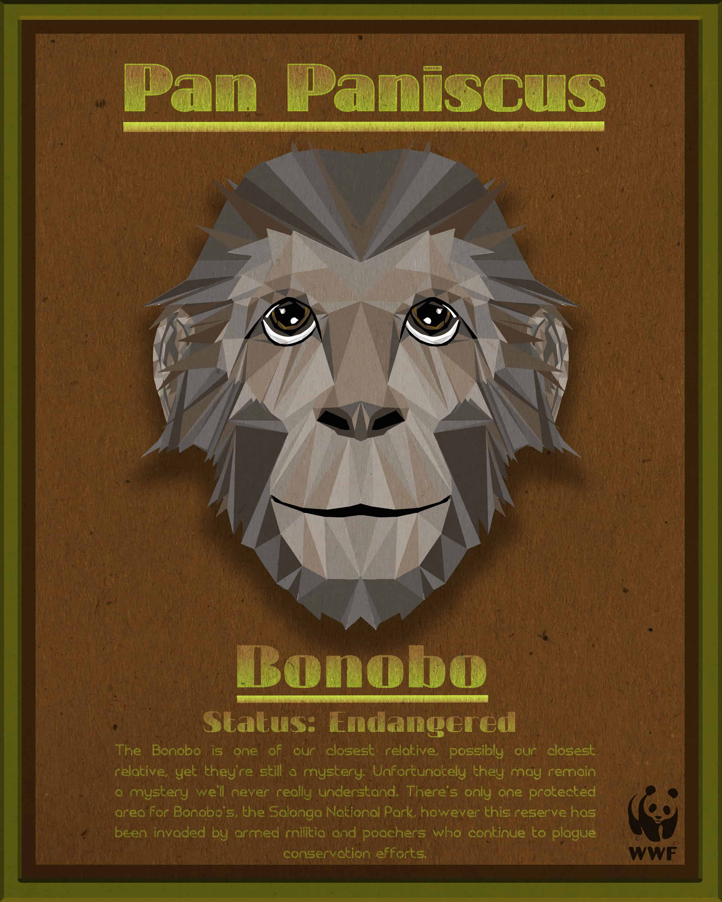 Bonobo Fact Sheet