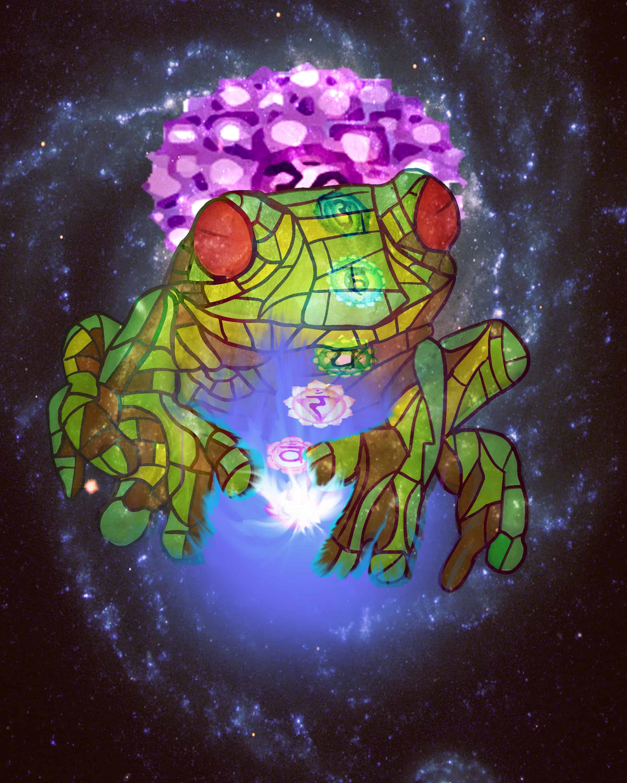Chakra Frog 2