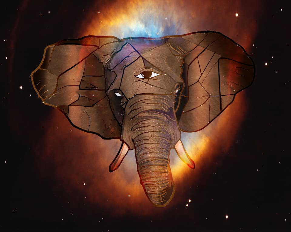 Elephant- The All Seeing