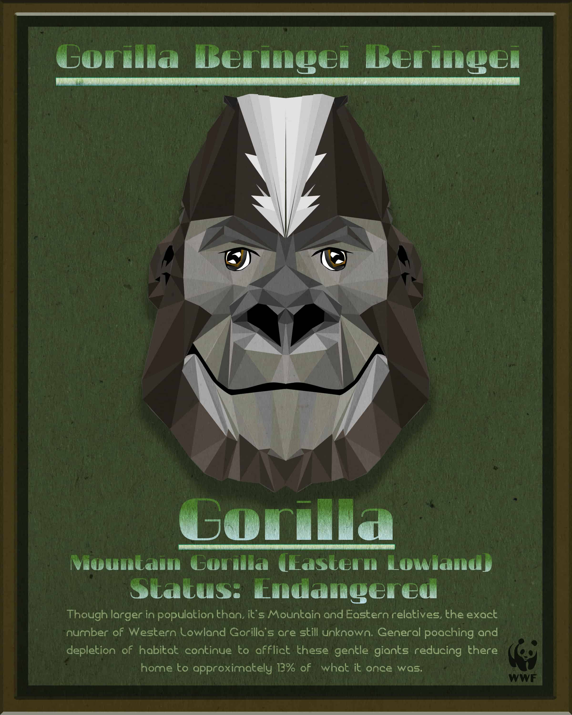 Gorilla Fact Sheet