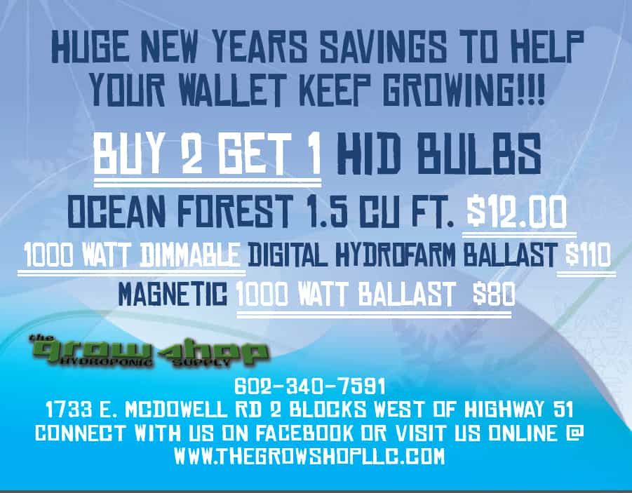 Grow Shop New Years Flyer page 2