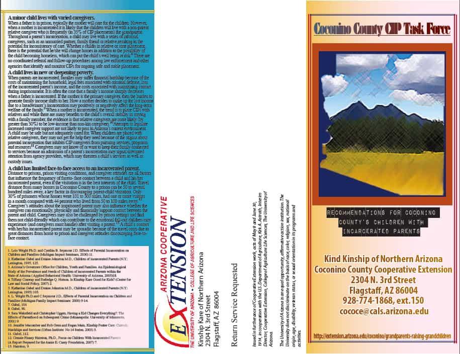 CIP Flyer 1